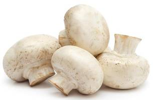 one dies in kashmir after eating mushrooms